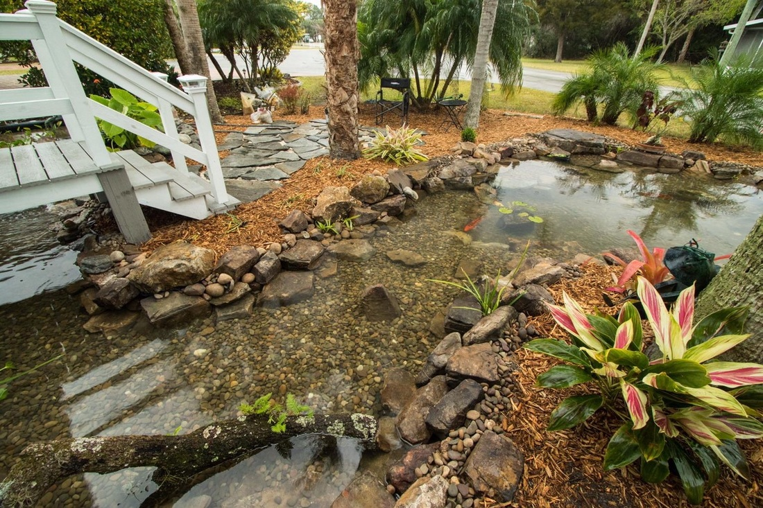 fl backyard fish koi pond contractor builder melbourne vero beach